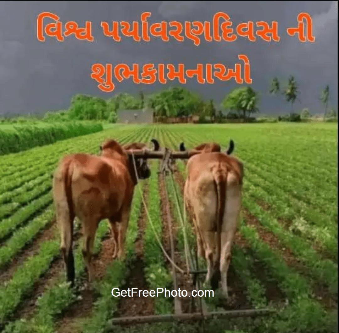 Vishv Paryavaran Divas World Environment day